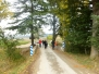 Paseo a la Ermita de Eunate